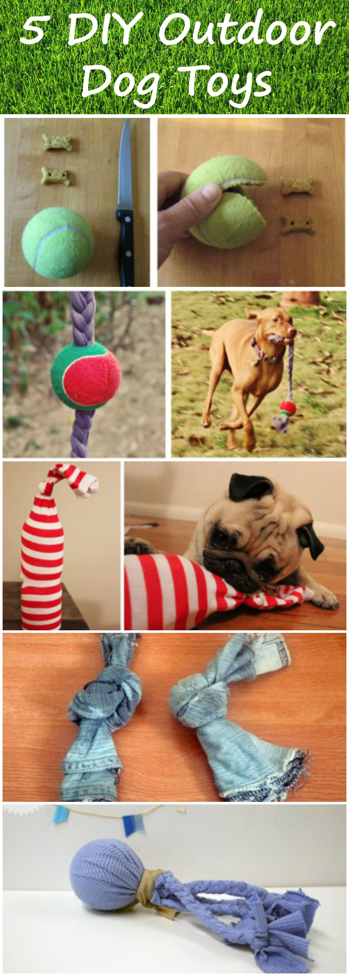 With These Simple And Effective DIY Dog Toys, Your Backyard Will Be  Transformed Into The