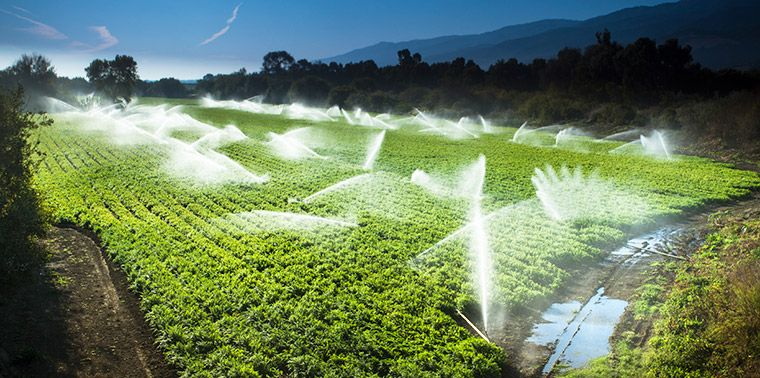 WHO OWNS GROUNDWATER? California's drought underscores the need to improve how the state — and the rest of us — divvy up a resource in deman...