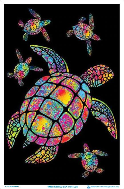 Collage Vintage Sea Turtle Clip Art Sea Life for Prints Invitations Scrapbooking Digital Download PNG Illustration 2193