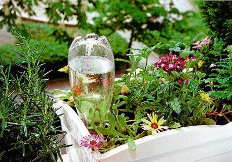 Urlopowe Podlewanie Kwiatow Decor Table Decorations Glass