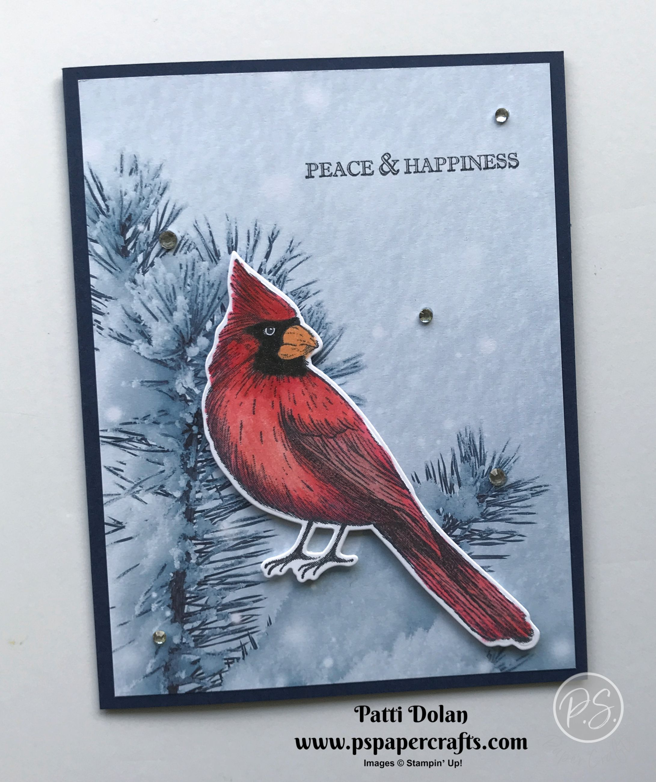Beautiful Cardinal Winter Card #wintercards
