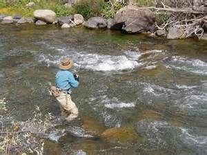 Smoky Mountain Trout Tournament Pesca