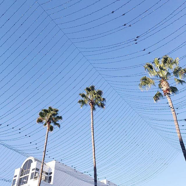 LA LA LAND! 🌴💙💡 Sou apaixonada por esse lugar! Já contei pra vocês que sempre foi meu sonho conhecer Los Angeles né? E nossa, sou tão mas tão grata pela oportunidade em estar aqui de novo!! 😌 Não importa que eu já vim uma, duas, três... sempre sinto como se fosse a primeira vez, é mágico! Fico emocionada ✨💕