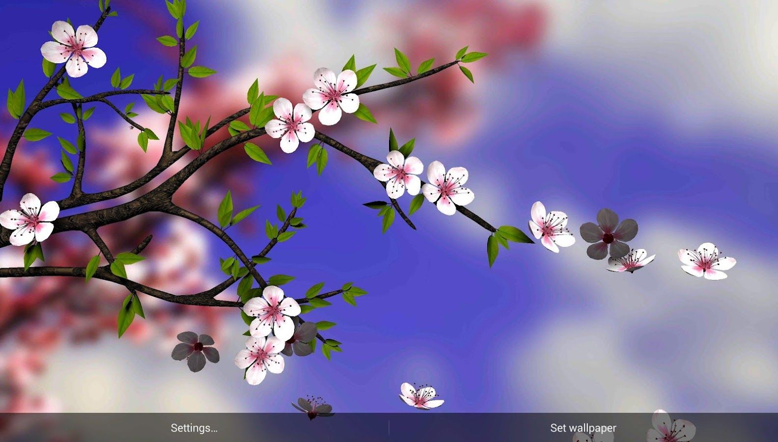 Google Images Spring Flowers Google Search Flowers Pinterest