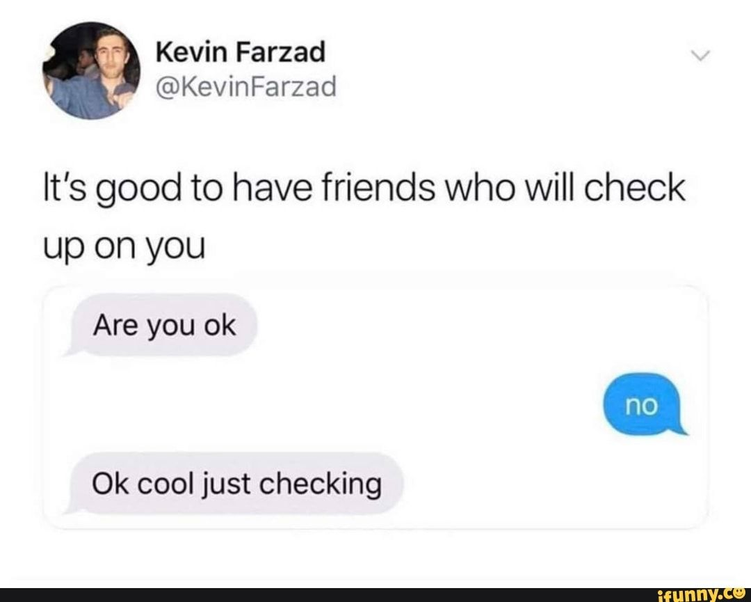 It S Good To Have Friends Who Will Check Up On You Are You Ok Ok Cool Just Checking Ifunny Memes Popular Memes Wholesome Memes