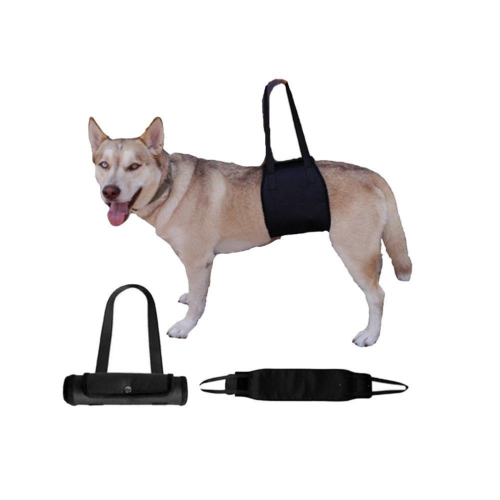 Pin On Dog Harnesses