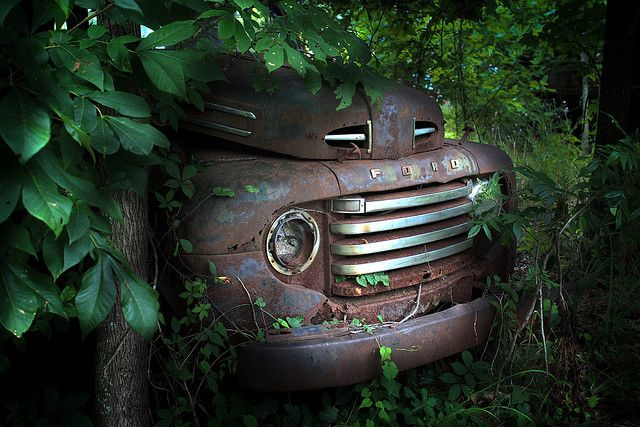 Truck Graveyard - Ford in the Bushes