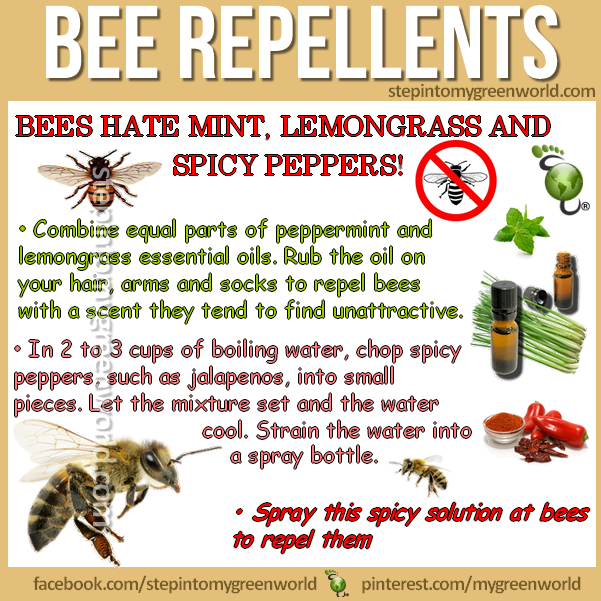 By Popular Demand Bee Repellents Homemade Recipes Try Them They Really Work For All The Details And Bee Repellent Getting Rid Of Bees Repellent Homemade
