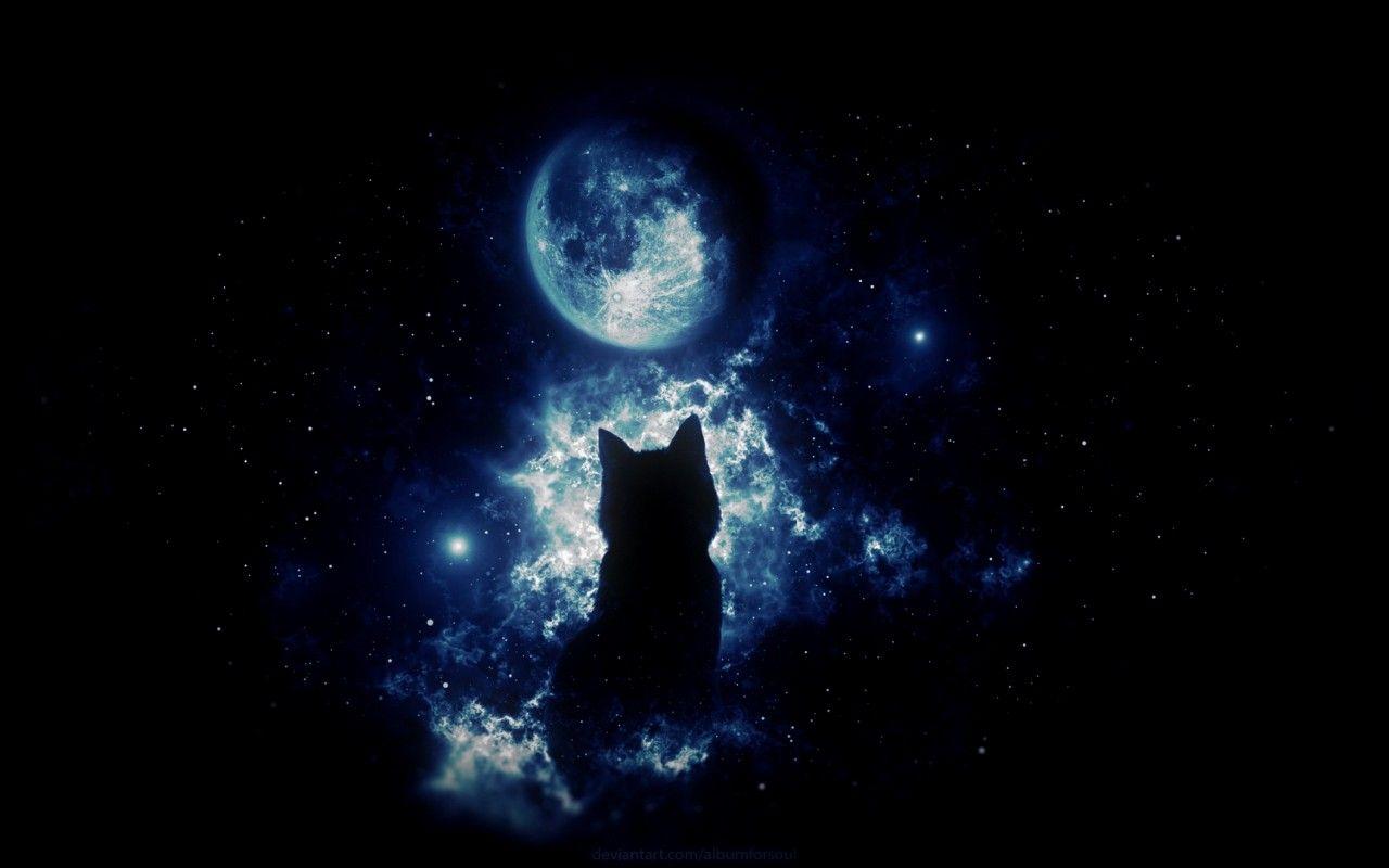 Anime Wallpaper Cats Anime Cat Staring At The Moon Hd Wallpaper 1280x800 Hd 1920x1080 Cute Black Cat Anime Wallpaper Anime Wallpaper Download Black Cat Anime Anime black cat hd wallpaper download