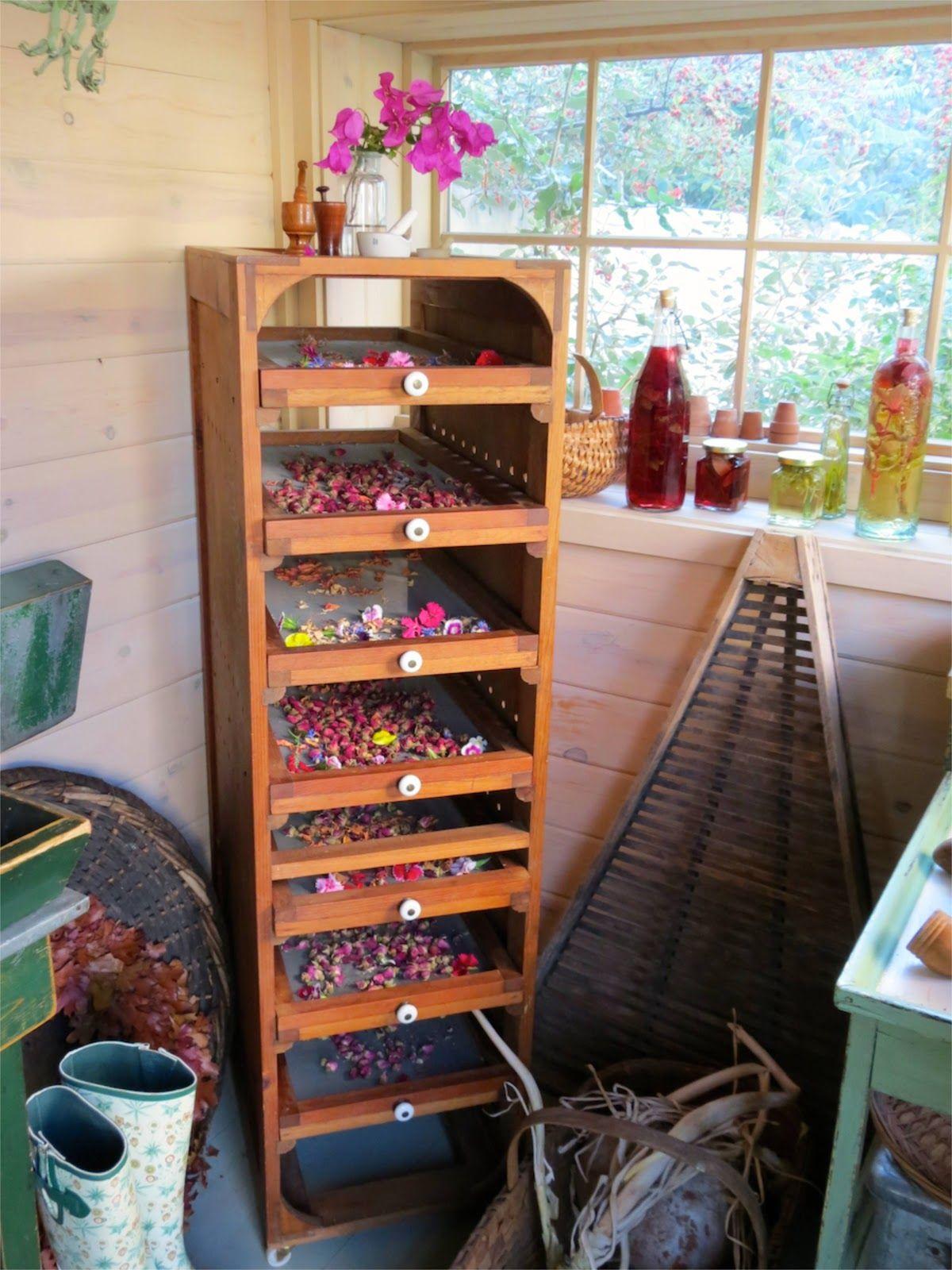 flower drying rack sharon lovejoy 39 s potting shed herbs pinterest kr uter kr uter. Black Bedroom Furniture Sets. Home Design Ideas
