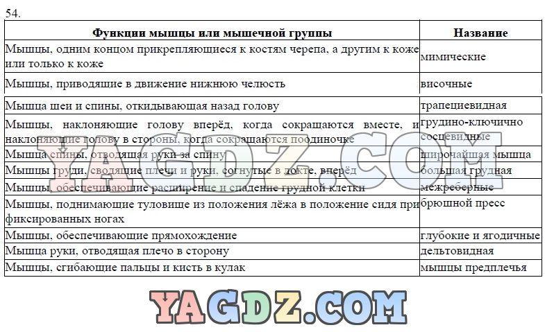 Решебник по русскому языку 3 класс верниковская грабчикова дёмина домашнее задание