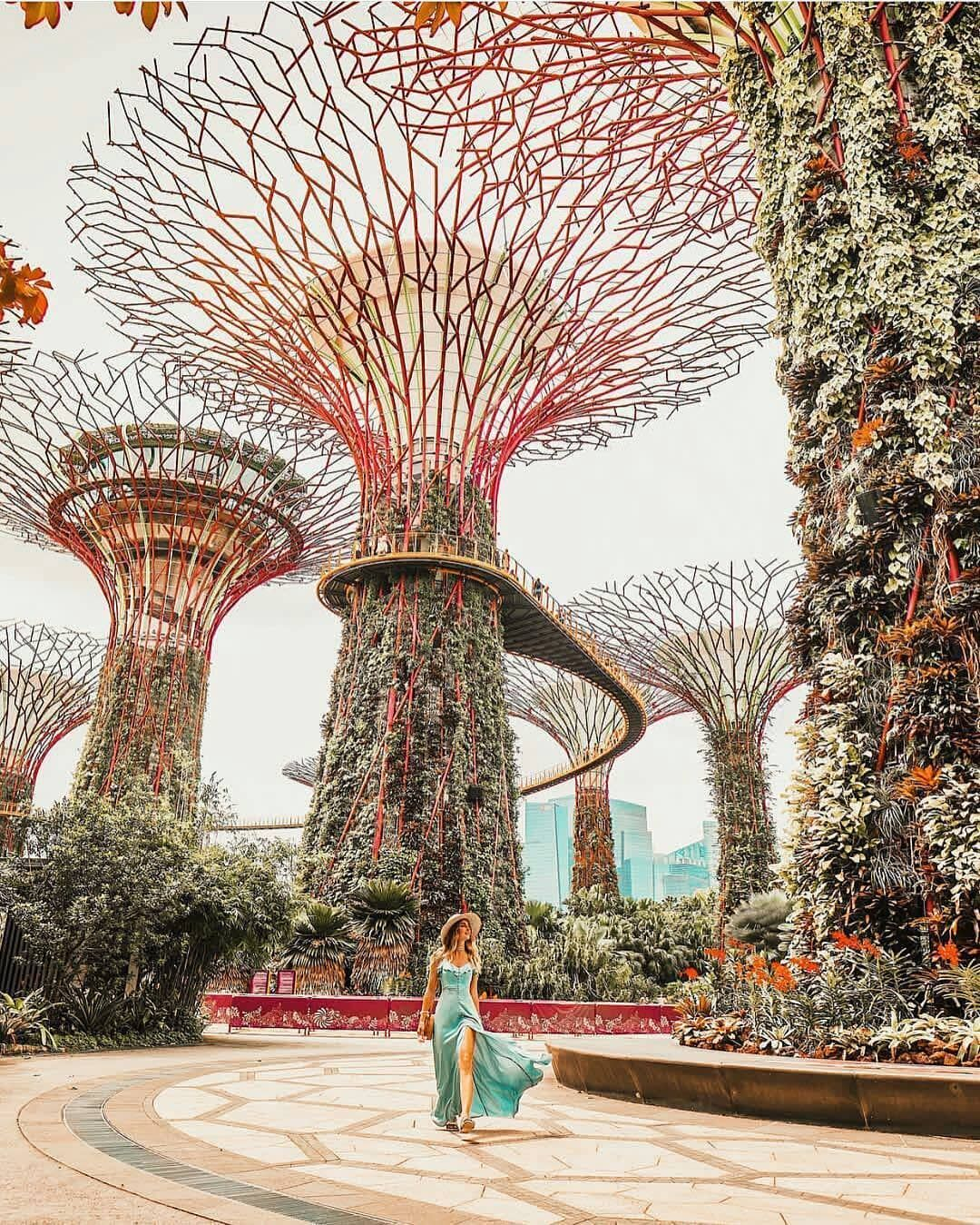 Travel Lifestyle Nature On Instagram Garden By The Bay Singapore Picture By N Kulikova M Singapore Travel Cool Places To Visit Travel