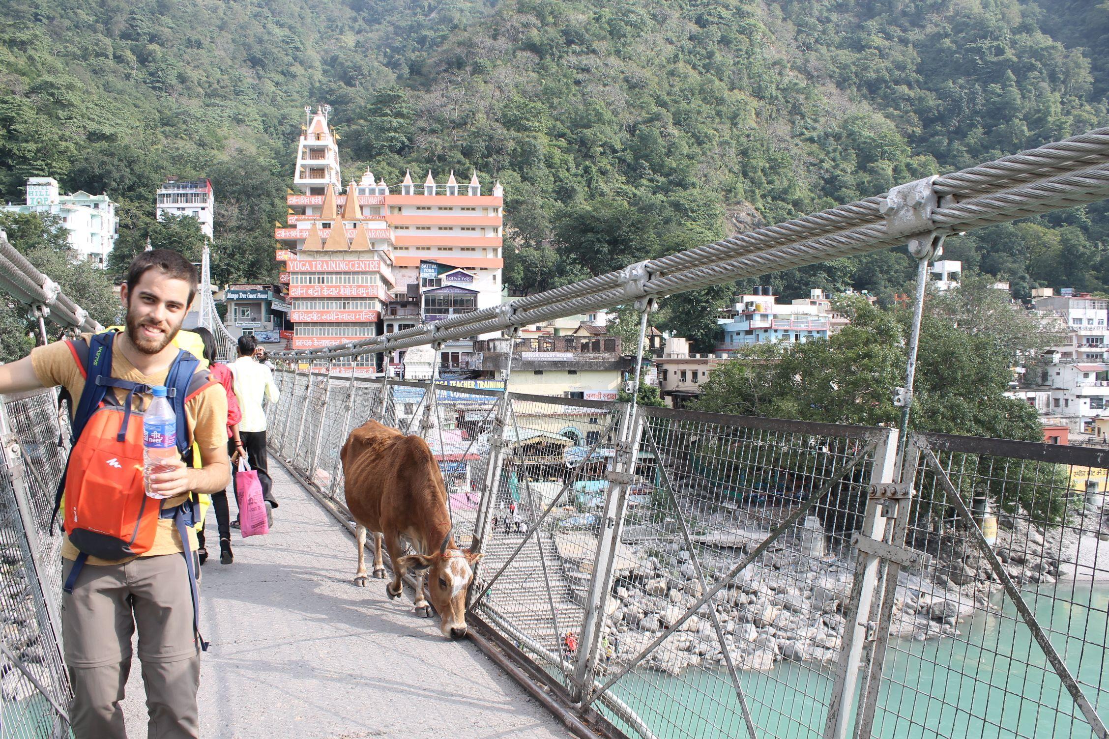 Puente de Lakshman Jhula, Rishikesh