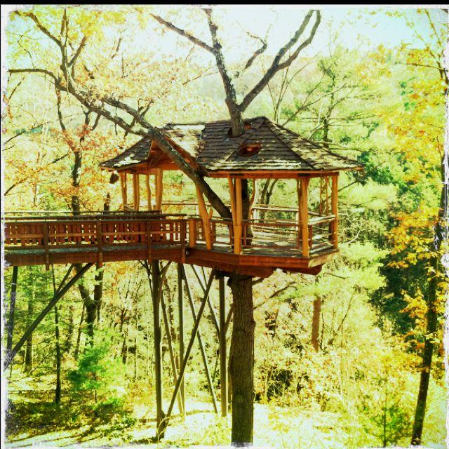 Places To Camp Pa: Nay Aug Park Treehouse. Scranton, PA. @Samantha Urbanick