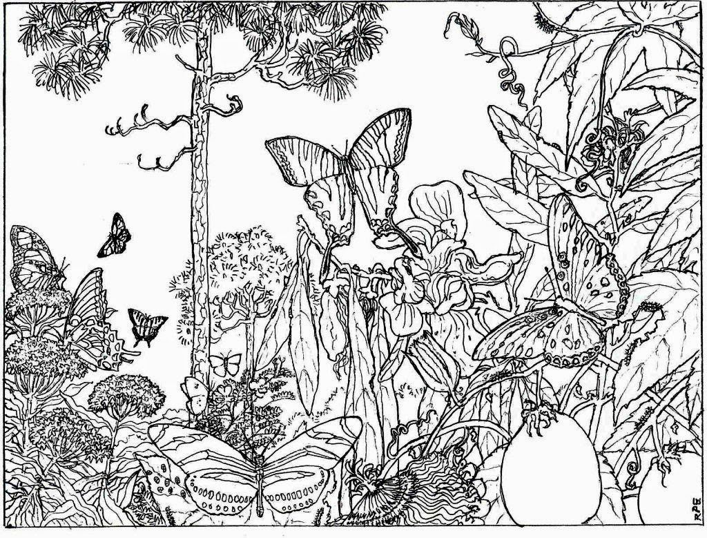 Nature Coloring Pages For Adults Coloringstar Enchanted Forest Coloring Book Detailed Coloring Pages Butterfly Coloring Page