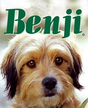 Download Benji Full-Movie Free