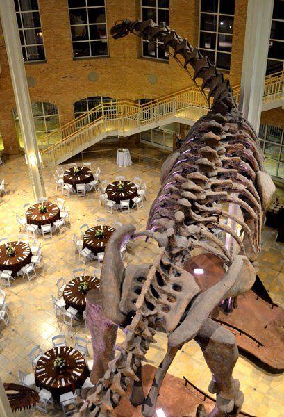 Fernbank Museum of Natural History www affairs com