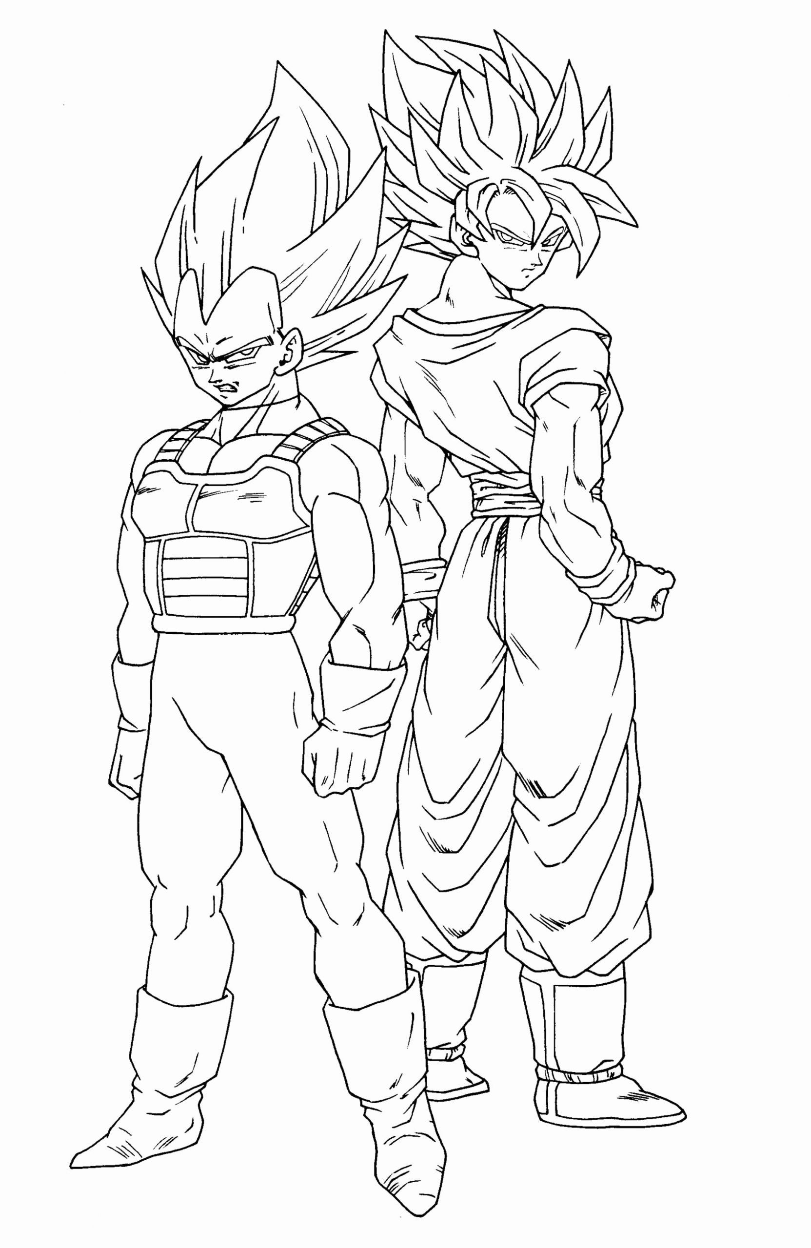 Dragon Ball Z Coloring Book Awesome Songoku And Ve A Dragon Ball Z Kids Coloring Pages Goku Desenho Vegeta Desenho Desenhos Dragonball