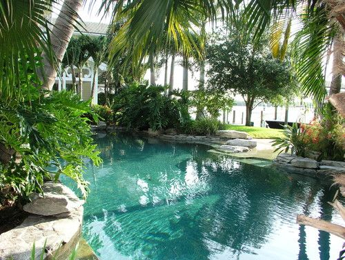 Amazing Pool Design   Tropical   Pool   Tampa   MJM Design Group, Inc.