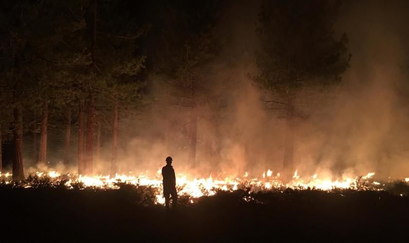 These Are The Largest Wildfires Burning In California Now California Wildfires Wildland Fire California