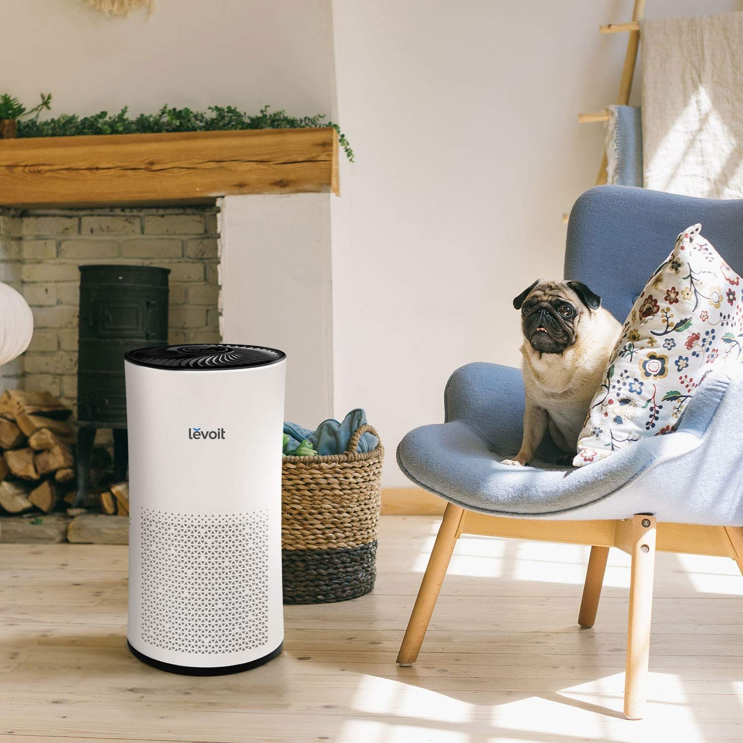 AmazonSmile LEVOIT Large Room Air Purifier with True Hepa