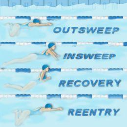 Breaststroke Kick – Swimming Technique and Tips