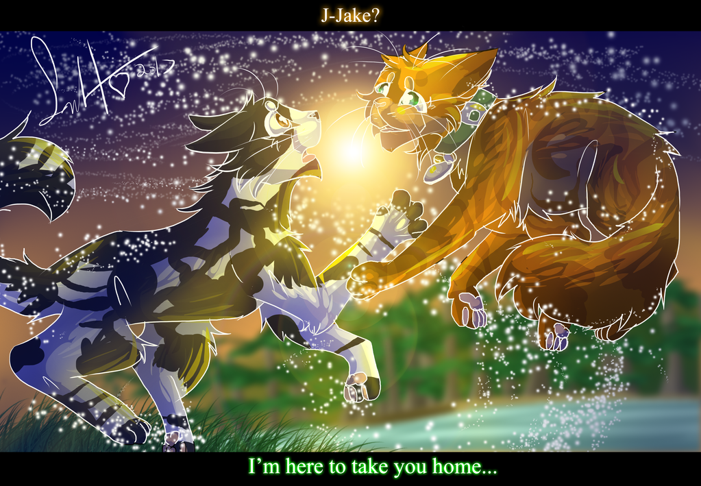 Home Warrior Cats Tallstar And Jake By Warriorcat3042 Warrior