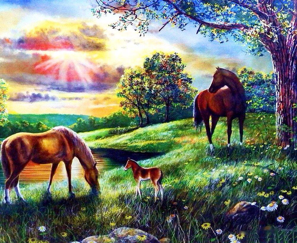 Download Wallpaper Horse Summer - a8473242e3ca0524b21698822cac07ad  You Should Have_151130.jpg