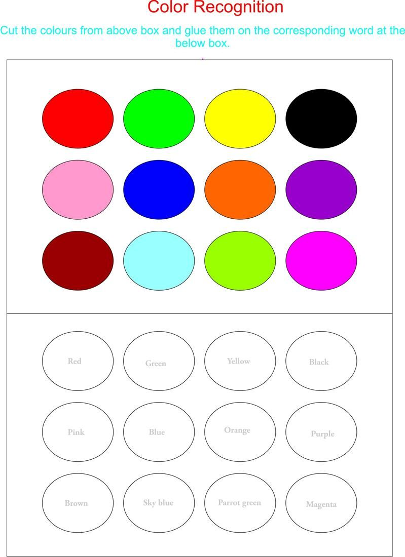 Color Recognition Worksheets For Preschoolers Working