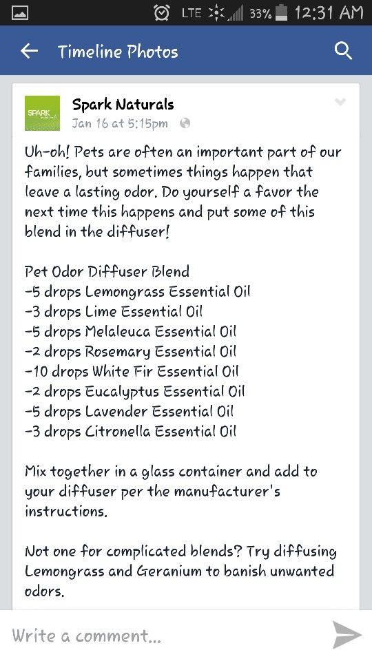 pet odor diffuser blend