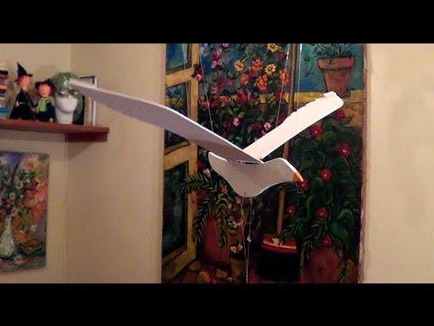 Gaivota - Flying bird - YouTube