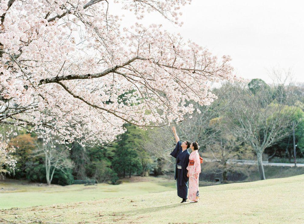 7 Best Cherry Blossom Photoshoot Spots In Kyoto Nara Japan Chymo More Photography Japan Destination Photographer Photo