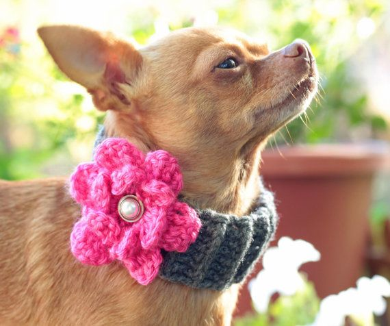 Crochet Dog Cowl Scarf Pattern With Flower Pdf By Tattewose Etsy