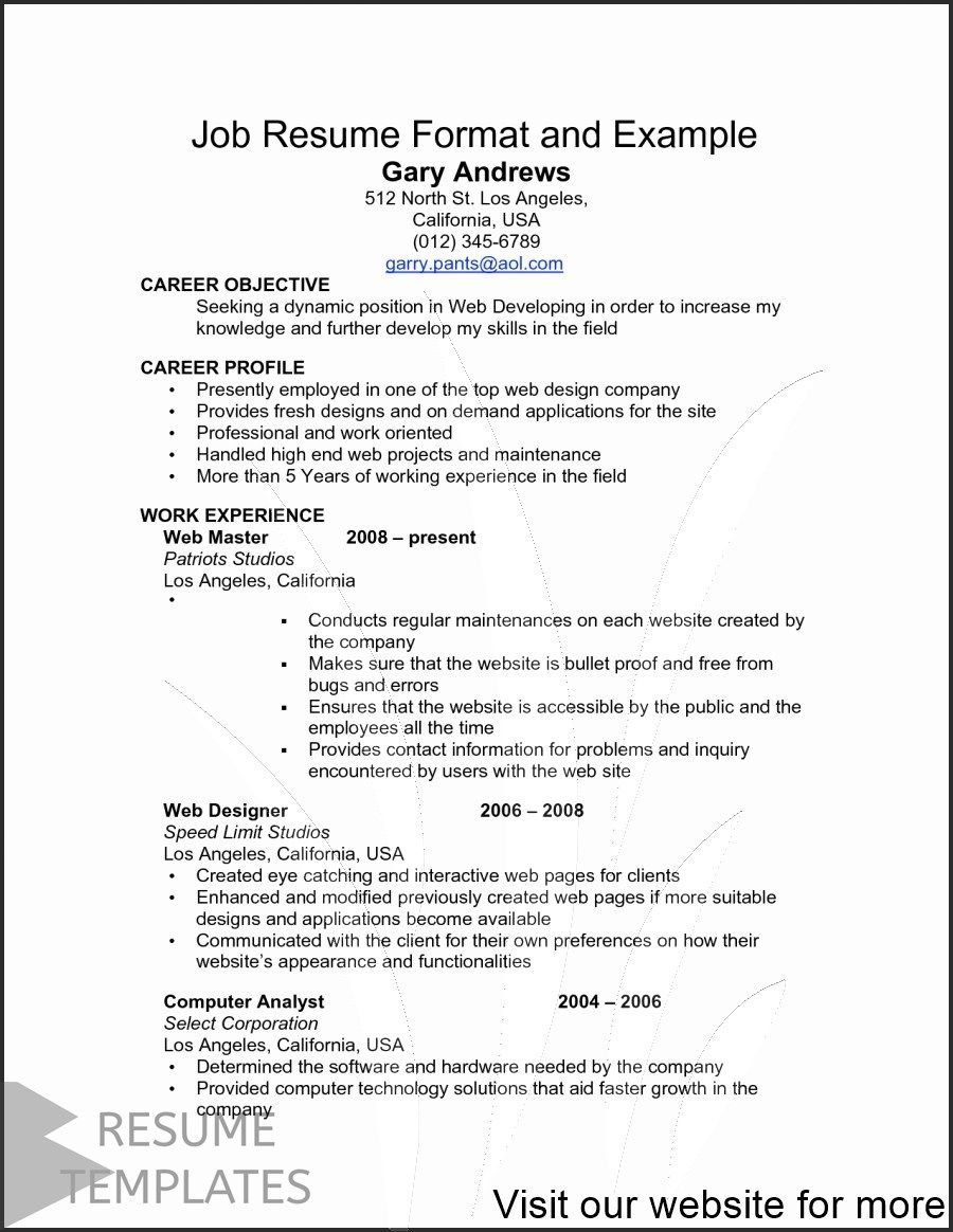 cv template ai free download in 2020 Resume template