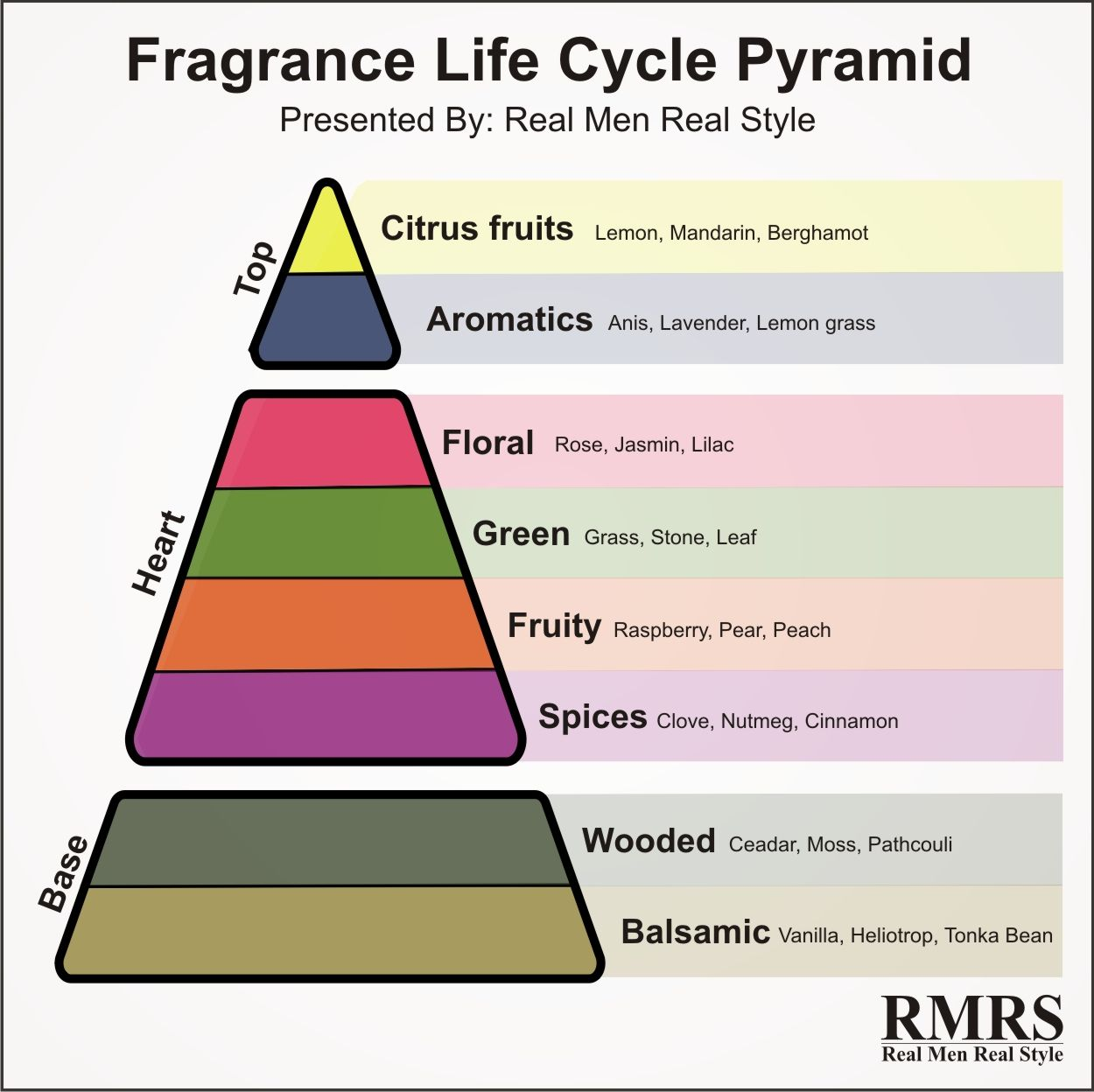 Fragrance Life Cycle Pyramid Infographic Best Perfume For Men Homemade Perfume Men Perfume