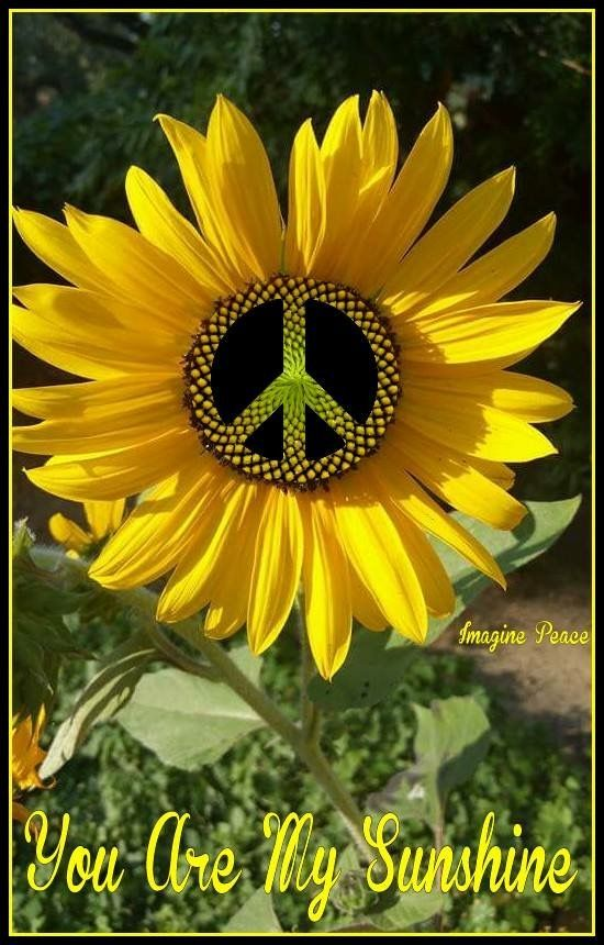 Pin by Jackie on Peace Signs | Peace art, Happy hippie, Peace