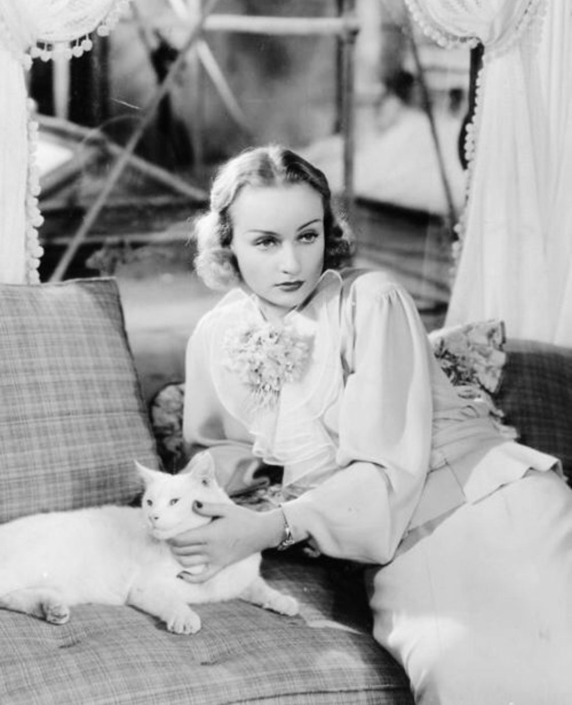 Pin By Trasea Maureen On Celebrity Cat Carole Lombard Celebrities With Cats Cat People