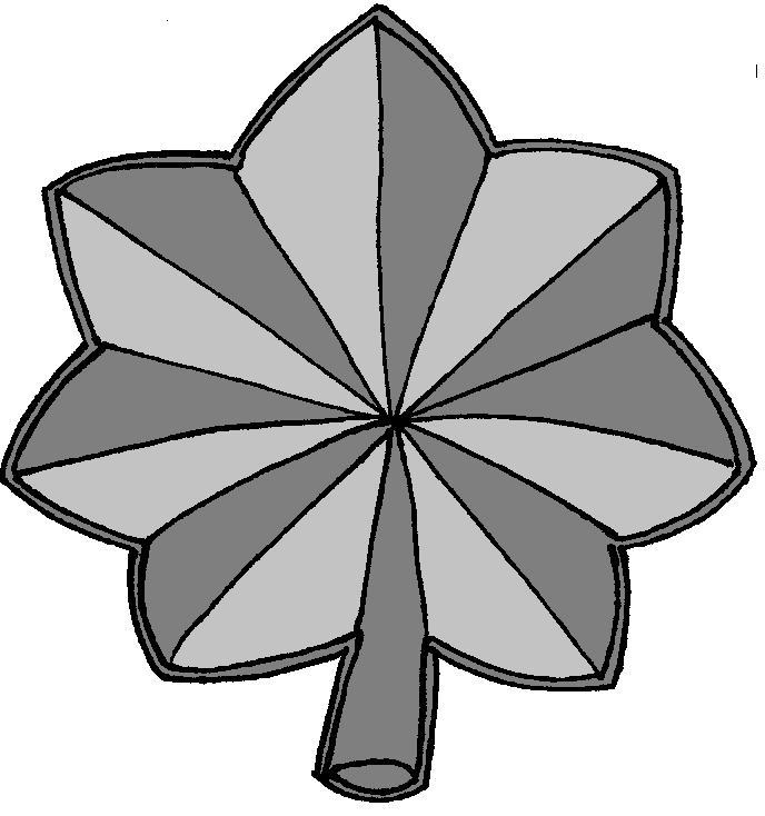 O 5 Lieutenant Colonel Marine Uniform Add Ons Pinterest