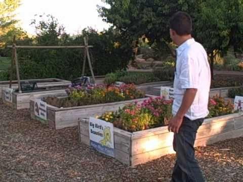 a84e2f8906705f029554162e5eaf5810 - Vegetable Gardening In The Desert Southwest