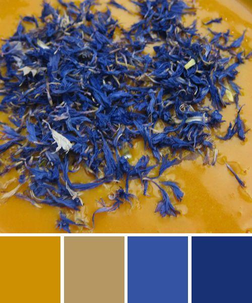 Farbinspirationen: Gelb Und Blau: Kürbis Und Kornblume