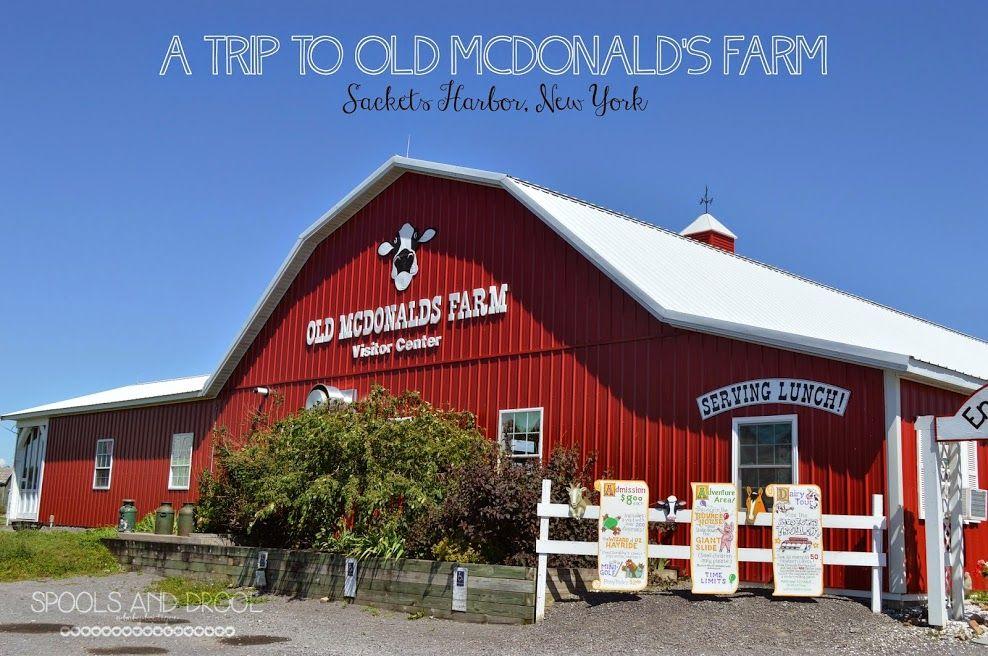 Old Mcdonald S Farm Sackets Harbor Ny Sackets Harbor Lake Ontario Farm