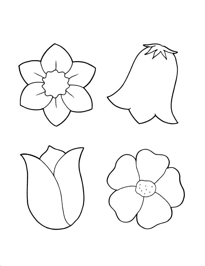 Flowers Flower Coloring Sheets Flower Coloring Pages Flower Template