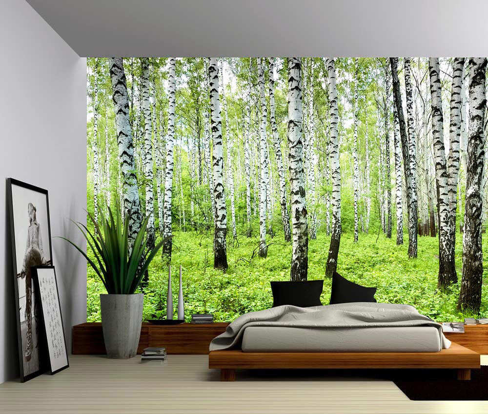 Birch Tree Forest Large Wall Mural, Selfadhesive Vinyl