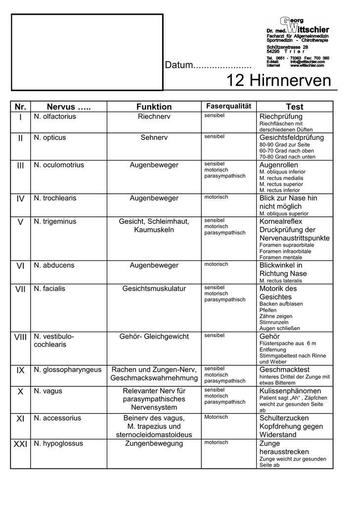 Wunderbar Hirnnerv 7 Anatomie Ideen - Anatomie Ideen - finotti.info
