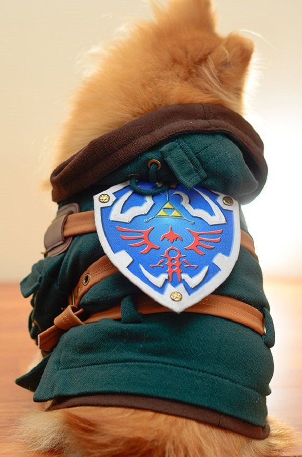 High Quality Costumes For Discerning Cosplay Pups & Cosplays fofos transformam seu cachorro em Link Naruto ou Goku ...