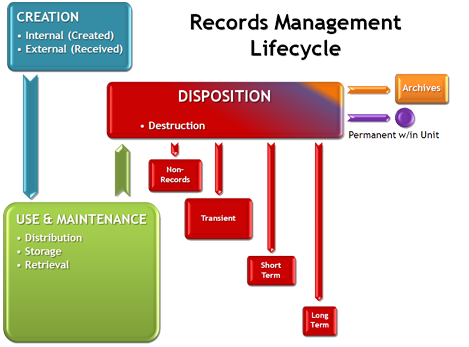 Records Management Lifecycle Visualization Records And