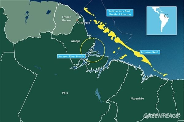 The Amazon Reef Brazil S Newly Discovered And Already Threatened