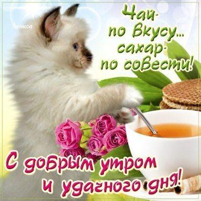 99 Odnoklassniki S Izobrazheniyami Dobroe Utro Veselye