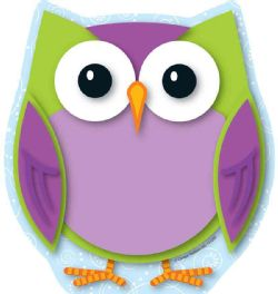 Colorful Owl Notepad (Paperback)