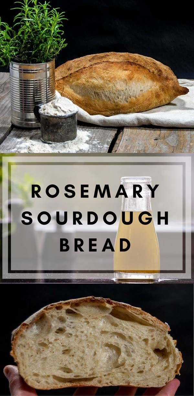Rosemary sourdough bread | Recipe | breadyum | Sourdough ...